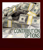 contribution options
